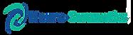 logo_NS_final.png