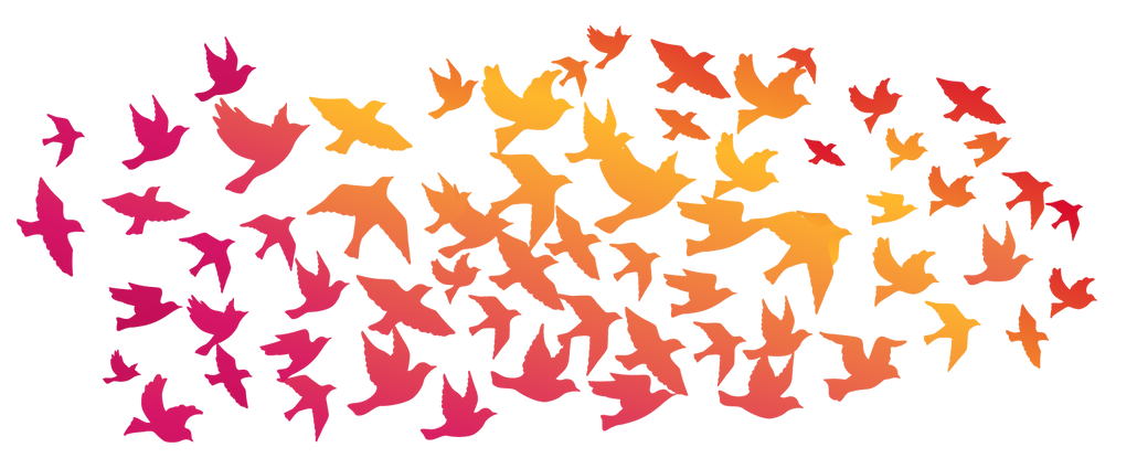 birds-large.png