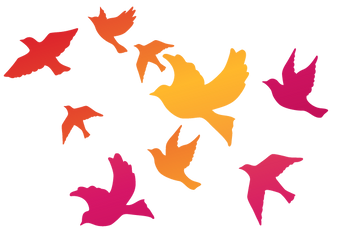 birds-square.png