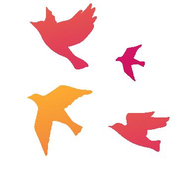 birds-four.png