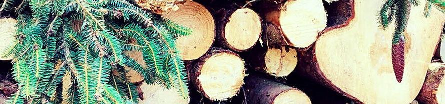 wood 11_edited.jpg