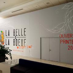 La Belle et La Boeuf Anjou 1