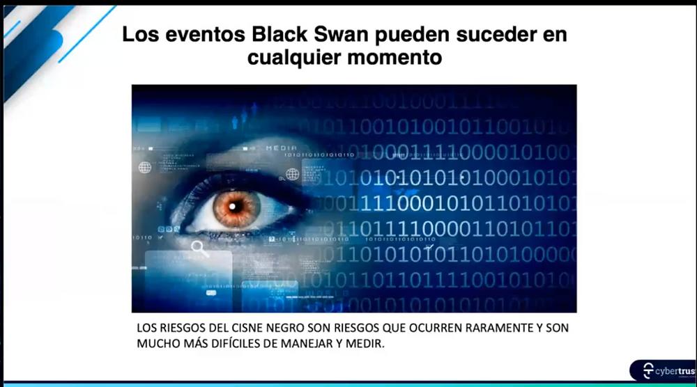 Explaining what is a black swan attack - Ataque Cisne Negro