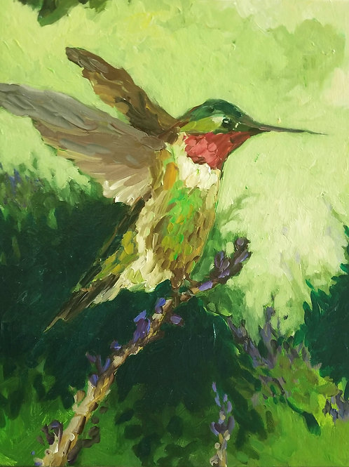 Hummingbird & Sage