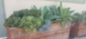 Student Art Garden