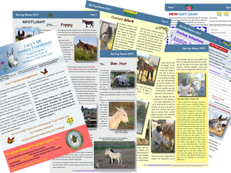Our latest Newsletter is out!