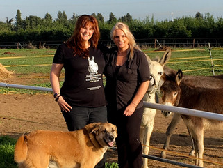 A visit to Lucy's sanctuary in Israel