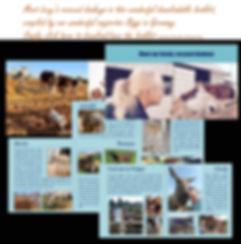 Collage-Biggi-Booklet-larger.jpg