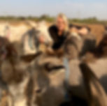 Lucy Fensom and her rescue donkeys
