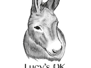 Welcome to Lucy's UK Donkey Foundation