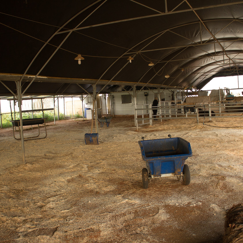 Another view of the stables - it takes a lot of time to muck them out!