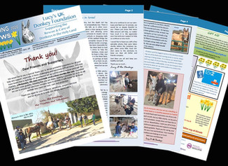 Our Spring Newsletter is out!