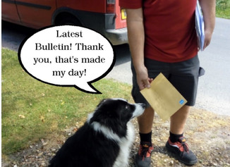 The latest Bulletin ist out!