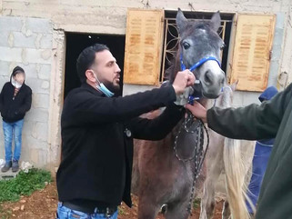 Our outreach clinic in the Palestinian village of Amoria