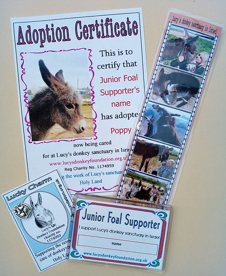 Junior Foal Supporter Starter Pack