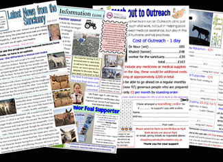 The latest Bulletin is out