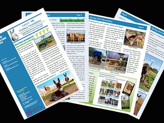 The Spring Newsletter is out!