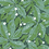 Thumbnail: Papier peint FIVE O CLOCK - Greenery