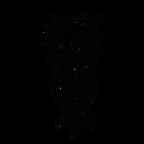 ananas_Zeichenfläche 1.png
