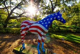 Windermere's Patriotic Stallion