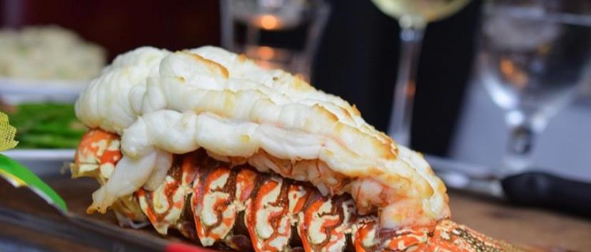 Signature Lobster