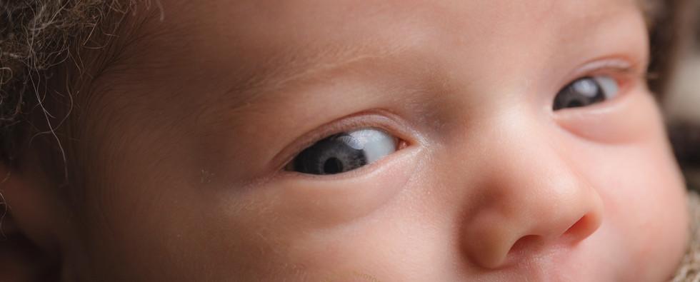 20120210DianeClarkinNewborn1-1.jpg