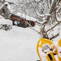 Gite au mont-dore sous neige hiver 2020.jpg