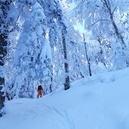Top 4 des activités hivernales pour votre séjour au Mont-Dore