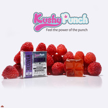 Recover Gummy By Kushy Punch