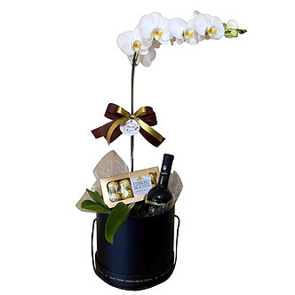 Kit Orquídea Vinho