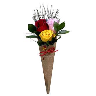 Cone Rosas Coloridas