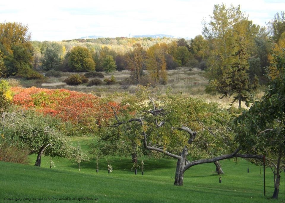 Chateauguay Valley Apple Picking and Orchard Guide 2019