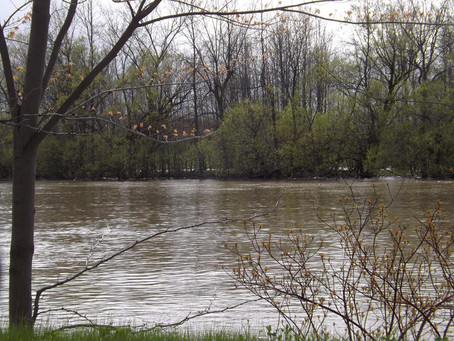 The Chateauguay River : Still On Flood Watch