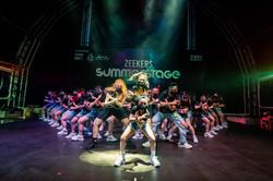 Zeekers SummerStage – 街舞匯演+市集