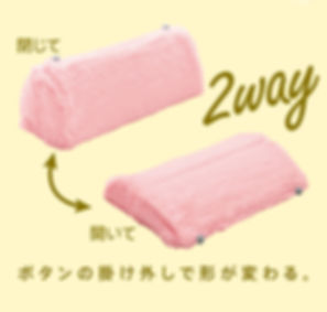 2way.jpg