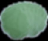 Parentesi-oval-col.-green.png