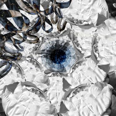 Digital Imaging - Composit Still Life