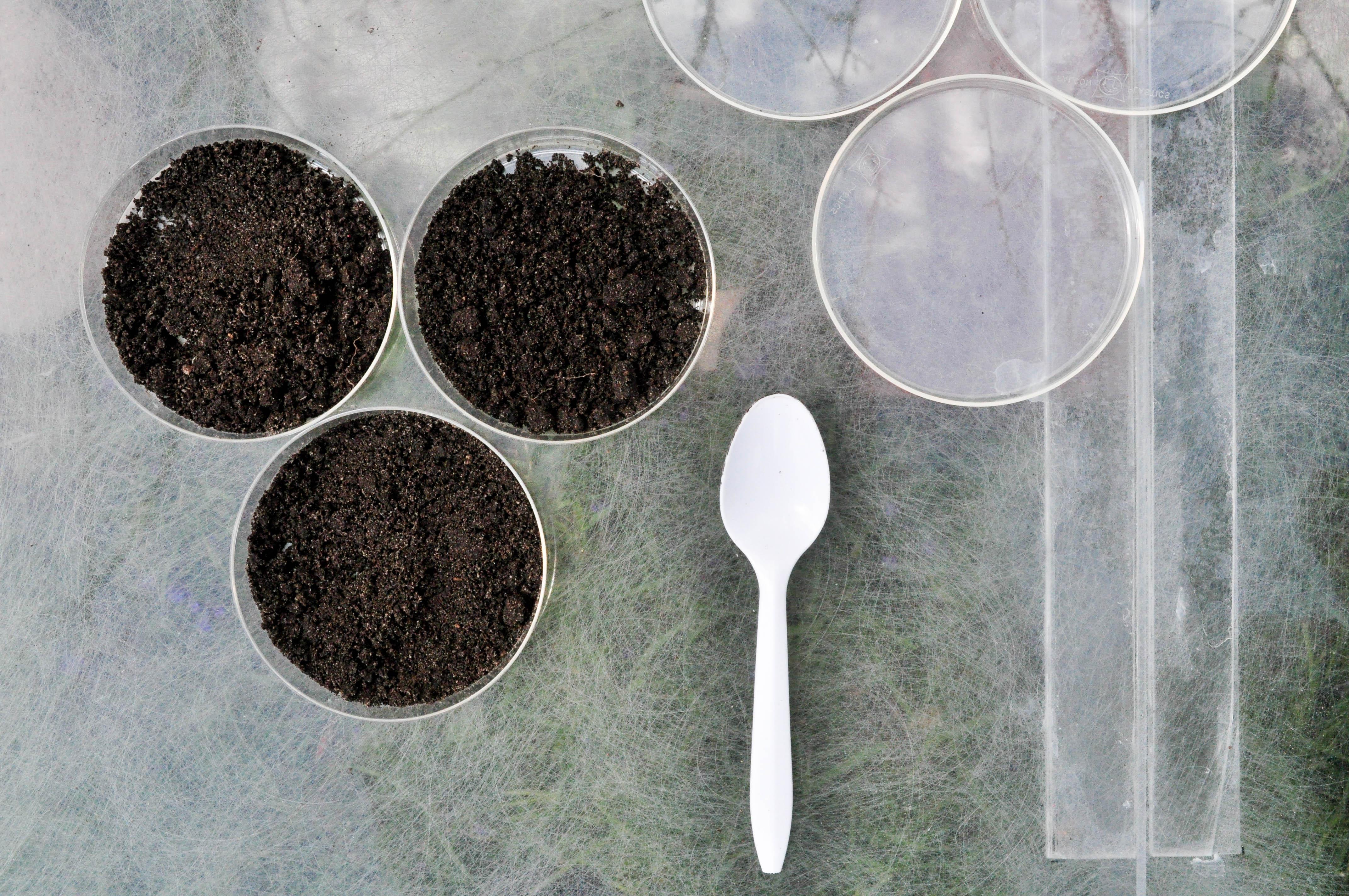 preparing soil.