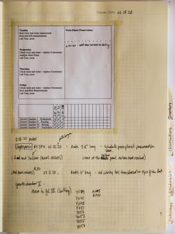 ACSE_Lab_book-7