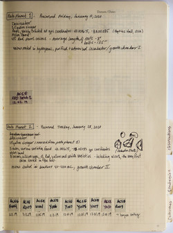 ACSE_Lab_book-14