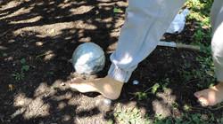 Tamping Foot
