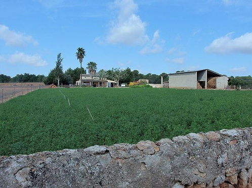 Country property with a lot of possibilities and two houses en Campos