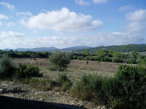 Einfamilienhaus zum fertig bauen mit schöne Blick in Montuiri