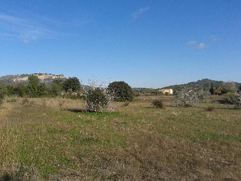 Buildingplot of 40.840 m2 with nice views near Llucmajor