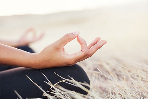 Meditointikurssi 27.3.21 klo 11-18