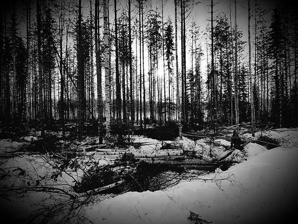 Valonpisara Paula Matikainen anteeksianto lumimaisema.jpg