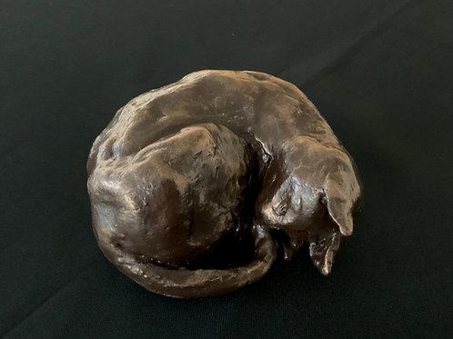Sleeping Cat Bronze Clay Kit