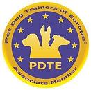 logo PDTE.jpg