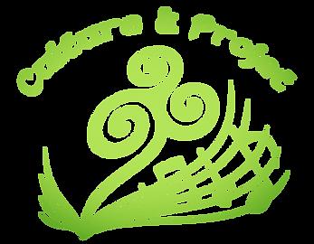 Stages musique et danse en Bretagne : accordéon, danse bretonne, danse des îles, violon, clarinette, chant