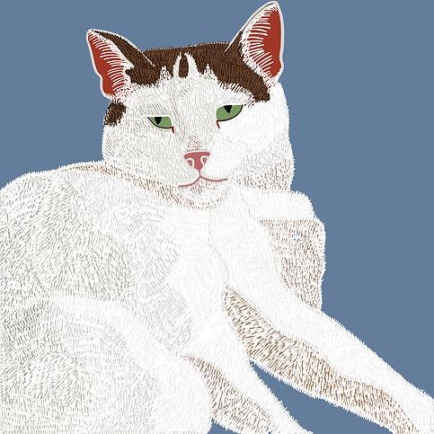 Noisette - Pretty Cat Portrait Illustration